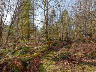 Photo 48: 3699 Burns Rd in COURTENAY: CV Courtenay West House for sale (Comox Valley)  : MLS®# 834832