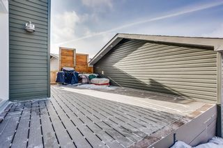 Photo 28: 103 Ravenswynd Rise SE: Airdrie Detached for sale : MLS®# A1064002
