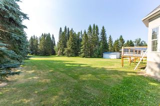 Photo 33: 121 62036 Twp 462: Rural Wetaskiwin County House for sale : MLS®# E4254421
