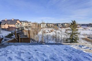 Photo 49: 36 ROYAL HIGHLAND Court NW in Calgary: Royal Oak Detached for sale : MLS®# A1029258