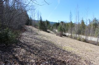 Photo 12: Lot 11 Ivy Road: Eagle Bay Vacant Land for sale (South Shuswap)  : MLS®# 10229941
