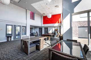 Photo 22:  in Edmonton: Zone 56 Condo for sale : MLS®# E4259823