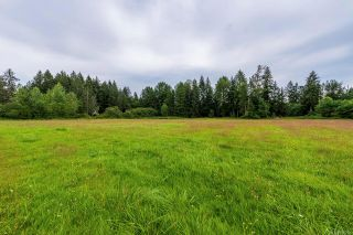 Photo 58: 3375 Piercy Rd in : CV Courtenay West House for sale (Comox Valley)  : MLS®# 850266