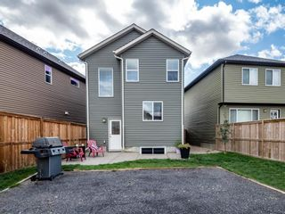 Photo 33: 30 Cranford Bay SE in Calgary: Cranston Detached for sale : MLS®# A1138033