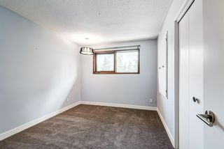 Photo 26: 204 Dalgleish Bay NW in Calgary: Dalhousie Detached for sale : MLS®# A1110304