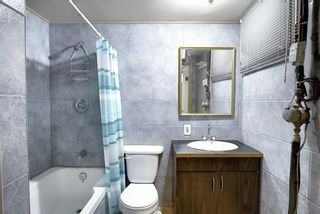 Photo 40: 28 Forest Green SE in Calgary: Forest Heights Detached for sale : MLS®# A1065576