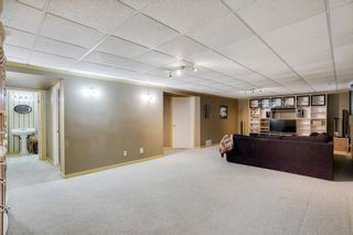 Photo 20: 164 Coventry Circle NE in Calgary: Coventry Hills Detached for sale : MLS®# A1102725