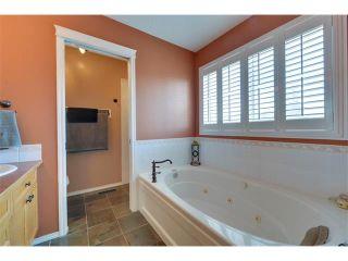 Photo 25: 83 MT SELKIRK Close SE in Calgary: McKenzie Lake House for sale : MLS®# C4066159