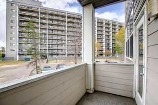 Photo 27: 203 59 Glamis Drive SW in Calgary: Glamorgan Apartment for sale : MLS®# A1149436