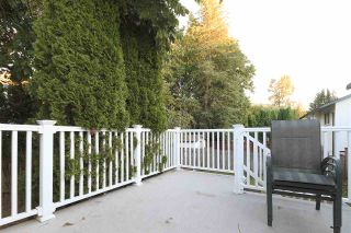 Photo 15: 3660 OLD CLAYBURN Road in Abbotsford: Abbotsford East House for sale : MLS®# R2205131