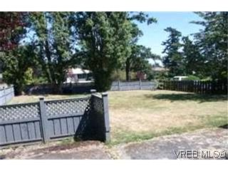 Photo 9: 551 Agnes St in VICTORIA: SW Glanford House for sale (Saanich West)  : MLS®# 404945
