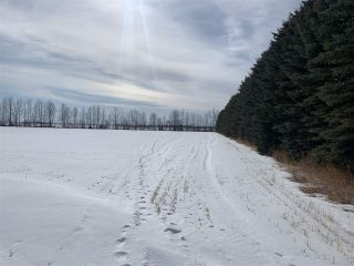 Photo 14: RR 25 HWY 661: Rural Westlock County Rural Land/Vacant Lot for sale : MLS®# E4236665