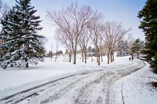 Photo 10: 3304 3 Street NW in Calgary: Highland Park Detached for sale : MLS®# A1066962