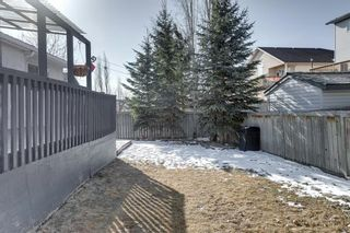 Photo 29: 112 Bow Ridge Court: Cochrane Detached for sale : MLS®# A1088859