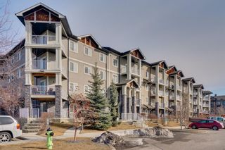 Photo 22: 1111 115 Preswick Villas in Calgary: McKenzie Towne Apartment for sale : MLS®# A1081474