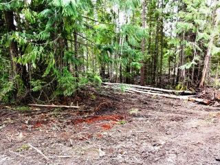 Photo 3: Lot 49 Vickers Trail in Anglemont: Land Only for sale : MLS®# 9185776