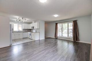 Photo 7: 11235 52 Street in Edmonton: Zone 09 House for sale : MLS®# E4252061