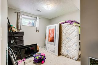 Photo 26: 8516 Bowness Road NW in Calgary: Bowness Detached for sale : MLS®# A1129149