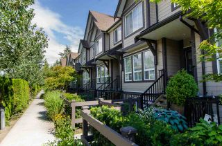 """Photo 1: 31 14877 60 Avenue in Surrey: Sullivan Station Townhouse for sale in """"LUMINA"""" : MLS®# R2092864"""