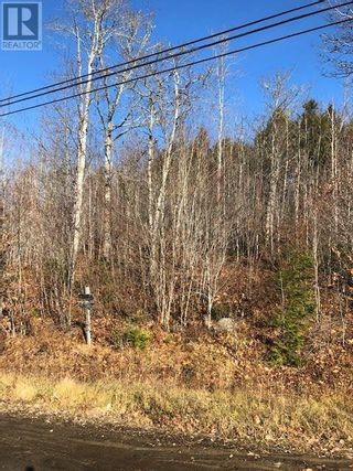 Photo 3: Lot 5 Highway 10 in Pinehurst: Vacant Land for sale : MLS®# 202111797