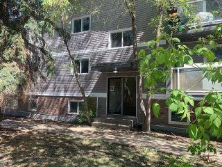 Photo 5: 103 8527 82 Avenue in Edmonton: Zone 17 Condo for sale : MLS®# E4245593