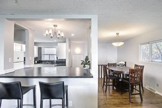 Photo 10: 9819 2 Street SE in Calgary: Acadia Detached for sale : MLS®# A1112448