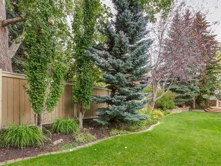 Photo 46: 308 COACH GROVE Place SW in Calgary: Coach Hill House for sale : MLS®# C4064754