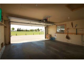 Photo 17: 228 ERIN MEADOW Close SE in Calgary: Erin Woods House for sale : MLS®# C4069091