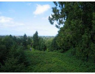Photo 7: 2240 SW MARINE Drive in Vancouver: Southlands House for sale (Vancouver West)  : MLS®# V631874