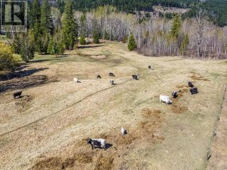 Photo 5: 8960 YELLOWHEAD HIGHWAY in Little Fort: Agriculture for sale : MLS®# 160776