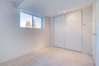 Photo 20: 4128 37 Street in Edmonton: Zone 29 House for sale : MLS®# E4253899