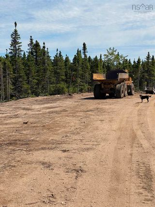 Photo 12: Lot 4 36056 Cabot Trail in Ingonish: 209-Victoria County / Baddeck Vacant Land for sale (Cape Breton)  : MLS®# 202119814
