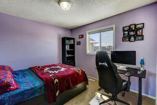 Photo 20: 181 Saddlecreek Point NE in Calgary: Saddle Ridge Detached for sale : MLS®# A1124301