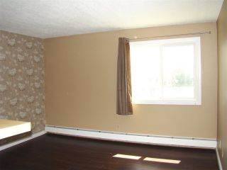Photo 14: 304 14825 51 Avenue in Edmonton: Zone 14 Condo for sale : MLS®# E4244015