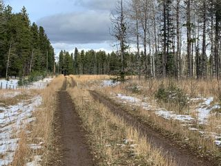 Photo 10: TOWNSHIP ROAD 290 WEST OF BOTTREL in Rural Rocky View County: Rural Rocky View MD Land for sale : MLS®# A1051910