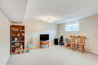 Photo 33: 137 Saddletree Close NE in Calgary: Saddle Ridge Detached for sale : MLS®# A1091689