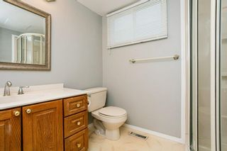 Photo 22:  in Edmonton: Zone 29 House for sale : MLS®# E4248358