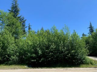 Photo 2: 1154 7th Ave in : PA Salmon Beach Land for sale (Port Alberni)  : MLS®# 877991