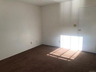 Photo 19: 2136 BOLT Avenue in COMOX: CV Comox (Town of) House for sale (Comox Valley)  : MLS®# 788022
