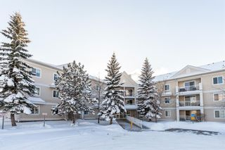 Photo 34: 1204 11 Chaparral Ridge Drive SE in Calgary: Chaparral Apartment for sale : MLS®# A1066729
