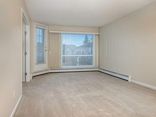 Photo 11: 313 2211 29 Street SW in Calgary: Killarney/Glengarry Apartment for sale : MLS®# A1138201