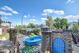 Photo 28: 51 Erin Park Close SE in Calgary: Erin Woods Detached for sale : MLS®# A1138830