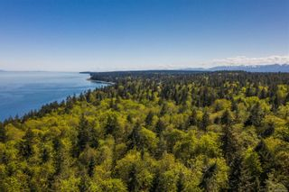 Photo 87: Lot 2 Eagles Dr in : CV Courtenay North Land for sale (Comox Valley)  : MLS®# 869395