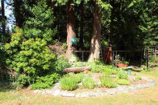 Photo 11: 7984 REDROOFFS Road in Halfmoon Bay: Halfmn Bay Secret Cv Redroofs House for sale (Sunshine Coast)  : MLS®# R2283729