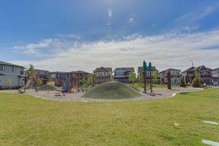 Photo 49: 39 CRANBROOK Lane SE in Calgary: Cranston Detached for sale : MLS®# C4247502