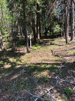 Photo 5: 4488 Little Harbour Road in Little Harbour: 108-Rural Pictou County Vacant Land for sale (Northern Region)  : MLS®# 202118097