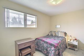 Photo 18: 1223 48 Avenue NW in Calgary: North Haven Detached for sale : MLS®# A1121377