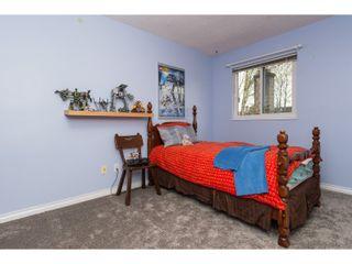 Photo 26: 10111 LAWSON DRIVE in Richmond: Steveston North House for sale : MLS®# R2042320