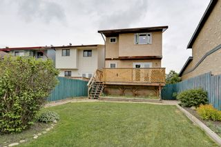 Photo 19: 4022 46 Street SW in Calgary: House for sale : MLS®# C4014489