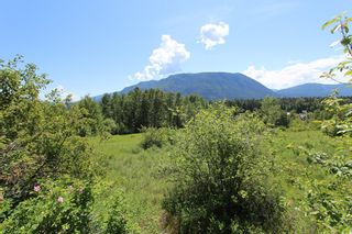 Photo 7: 37 2481 Squilax Anglemont Road in Lee Creek: North Shuswap Land Only for sale (Shuswap)  : MLS®# 10094382